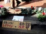 20051225-浜町西青年会・もちつき大会-1017-DSC02041