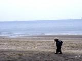 20050416-千葉市美浜区美浜・幕張海浜公園・人工海浜幕張の浜-1202-DSC09007