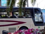 20050519-船橋市浜町2・ららぽーとホテルサンガーデン・修学旅行バス-0857-DSC00131.JPG