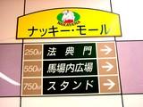 20050807-中山競馬場・花火大会-1723-DSC04141
