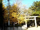 20051203-船橋宮本・大神宮お酉様-0954-DSC09554