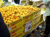 20051203-船橋中央卸売市場・ふなばし楽市-1013-DSC09612