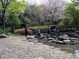 20050416-習志野市・習志野緩衝緑地・香澄公園・ザリガニ取り-1021-DSC08748
