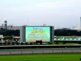 20050807-中山競馬場・花火大会-1750-DSC04205