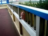 20060727-船橋市浜町2・浜町歩道橋-0852-DSC03180