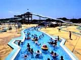 稲毛海浜公園プール・流水プール020