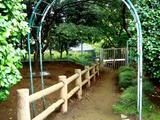 20060716-船橋市夏見台6・運動公園・ホタルの里-1330-DSC00370
