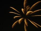 20060726-船橋市民まつり・船橋親水公園花火大会-1943-DSC03059