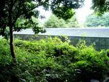 20060716-船橋市夏見台6・運動公園・ホタルの里-1331-DSC00380