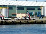 20060726-船橋市民まつり・船橋親水公園花火大会-0833-DSC02647