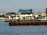 20060726-船橋市民まつり・船橋親水公園花火大会-0833-DSC02648