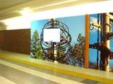20061206-JR東京駅・旭山ハイビジョン動物園-2020-DSC06614
