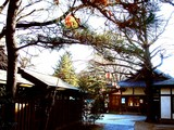 20061229-船橋市宮本・船橋大神宮・お焚き上げ-1419-DSC00569