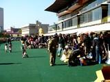 20061125-船橋市若松・船橋競馬場・ふれあい広場-1135-DSC04129