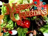 20061224-クリスマスツリー・大根・サニーレタス-1800-DSC00111