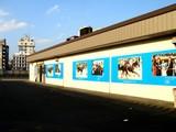 20060920-船橋市若松1・船橋競馬場・ミュージアム-1550-DSC01860