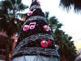 20061103-ららぽーと・巨大クリスマスツリー-1559-DSC08953