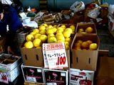 20061202-船橋中央卸売市場・ふなばし楽市-1032-DSC05585