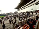 20061126-船橋市・中山競馬場・流鏑馬-1130-DSC04737