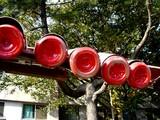 20061118-習志野市谷津・沖縄学生会館・沖学祭-1248-DSC01591