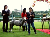 20060916-船橋市古作・中山競馬場・結婚式-1151-DSC00679