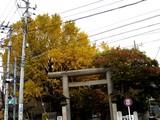 20061123-船橋市宮本5・大神宮・秋-1309-DSC02677