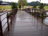 20061119-東京都江戸川区・葛西臨海公園-1201-DSC02211