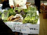 20061126-船橋市・中山競馬場・フリーマーケット-1109-DSC04494