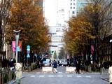 20061215-東京都千代田区丸の内・光都東京ライトピア-1254-DSC07894