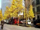 20061215-東京駅丸の内南口・スカイバスTOKYO-1241-DSC07836