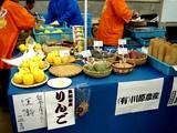 20061126-船橋市・中山競馬場・フリーマーケット-1108-DSC04490