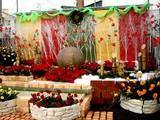 20061210-谷津サンプラザ商店街・クリスマス-0941-DSC06875