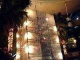 20061101-ららぽーと・巨大クリスマスツリー-2358-DSC08771
