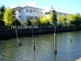 20061008-船橋市日の出1・船橋市立湊中学校-1033-DSC05426
