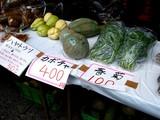 20061112-船橋市農水産祭・船橋中央卸売り市場-1026-DSC00588
