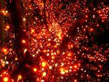 20061215-東京都千代田区丸の内・光都東京ライトピア-2114-DSC07991