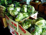 20061202-船橋中央卸売市場・ふなばし楽市-1032-DSC05577