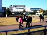 20061125-船橋市若松・船橋競馬場・ふれあい広場-1130-DSC04096