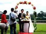20060916-船橋市古作・中山競馬場・結婚式-1154-DSC00690