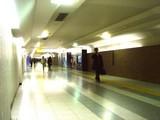 20061206-JR東京駅・旭山ハイビジョン動物園-2019-DSC06604