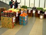 20061126-船橋市・中山競馬場・フリーマーケット-1107-DSC04481