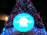 20061116-ららぽーと・巨大クリスマスツリー-2132-DSC01321