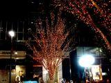 20061215-東京都千代田区丸の内・光都東京ライトピア-2105-DSC07963