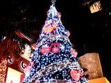 20061116-ららぽーと・巨大クリスマスツリー-2135-DSC01327