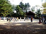 20061124-船橋市宮本・大神宮・スケッチ-1125-DSC03139