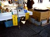 20061112-船橋市農水産祭・船橋中央卸売り市場-0914-DSC00429