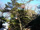 20061229-船橋市宮本・船橋大神宮・お焚き上げ-1417-DSC00560