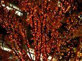20061215-東京都千代田区丸の内・光都東京ライトピア-2107-DSC07969