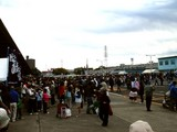 20061112-船橋市農水産祭・船橋中央卸売り市場-1012-DSC00532