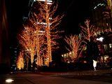 20061215-東京都千代田区丸の内・光都東京ライトピア-2116-DSC07997